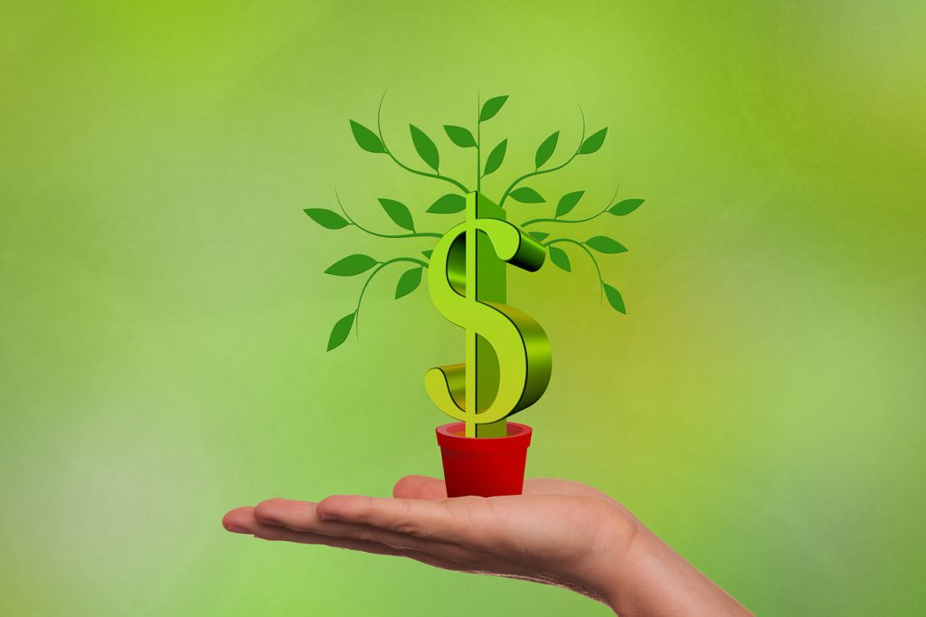 hand holding a plant with a money symbol as the stalk and leaves coming out of it